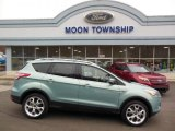 2013 Frosted Glass Metallic Ford Escape Titanium 2.0L EcoBoost 4WD #75021296