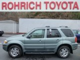 2006 Titanium Green Metallic Ford Escape Limited 4WD #75021763