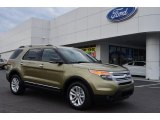 Ginger Ale Metallic Ford Explorer in 2013