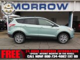 2013 Frosted Glass Metallic Ford Escape SEL 2.0L EcoBoost 4WD #75021209
