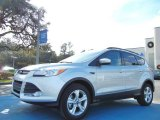 2013 Ingot Silver Metallic Ford Escape SE 2.0L EcoBoost #75021193