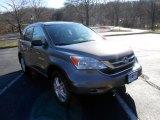 2010 Urban Titanium Metallic Honda CR-V EX #75123431