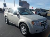 2009 Light Sage Metallic Ford Escape XLS #75161377