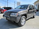2004 Jeep Grand Cherokee Dark Khaki Pearl