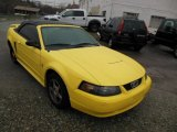 2003 Zinc Yellow Ford Mustang V6 Convertible #75194418