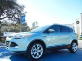 2013 Frosted Glass Metallic Ford Escape Titanium 2.0L EcoBoost #75226518