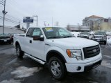 2010 Oxford White Ford F150 FX4 SuperCab 4x4 #75226592