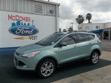 2013 Frosted Glass Metallic Ford Escape SE 1.6L EcoBoost #75336590
