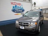 2011 Sterling Grey Metallic Ford Escape XLS #75357123