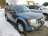 2010 Steel Blue Metallic Ford Escape XLT #75395029