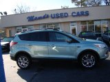 2013 Frosted Glass Metallic Ford Escape SEL 1.6L EcoBoost #75457427