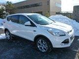 2013 White Platinum Metallic Tri-Coat Ford Escape SEL 2.0L EcoBoost 4WD #75524361