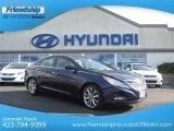 2013 Indigo Night Blue Hyundai Sonata SE #75524263