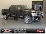 2010 Tuxedo Black Ford F150 Platinum SuperCrew 4x4 #75524746