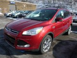 2013 Ruby Red Metallic Ford Escape SEL 2.0L EcoBoost 4WD #75611957