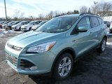 2013 Frosted Glass Metallic Ford Escape SE 1.6L EcoBoost 4WD #75611956