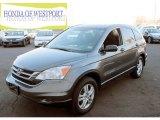 2010 Polished Metal Metallic Honda CR-V EX AWD #75611921