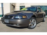 2001 Mineral Grey Metallic Ford Mustang GT Coupe #75611915