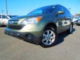 2007 Green Tea Metallic Honda CR-V EX-L #75612288