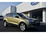 2013 Ginger Ale Metallic Ford Escape SE 1.6L EcoBoost #75669560