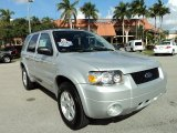 2006 Silver Metallic Ford Escape Hybrid 4WD #75786517
