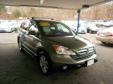 2009 Green Tea Metallic Honda CR-V EX-L 4WD #75786799