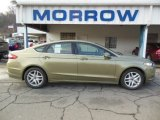 2013 Ginger Ale Metallic Ford Fusion SE #75880775