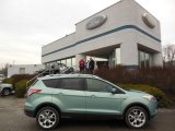 2013 Frosted Glass Metallic Ford Escape Titanium 2.0L EcoBoost 4WD #75880724