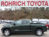 2010 Spruce Green Mica Toyota Tundra TRD Double Cab 4x4 #75925112