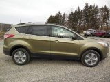 2013 Ginger Ale Metallic Ford Escape SE 1.6L EcoBoost 4WD #75924415