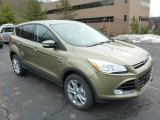 2013 Ginger Ale Metallic Ford Escape SEL 2.0L EcoBoost 4WD #75977477