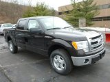 2013 Kodiak Brown Metallic Ford F150 XLT SuperCrew 4x4 #75977476