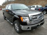 2013 Kodiak Brown Metallic Ford F150 XLT SuperCrew 4x4 #75977474
