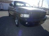 1999 Black Dodge Ram 1500 Sport Regular Cab #76072592