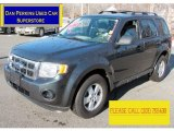 2009 Black Pearl Slate Metallic Ford Escape XLS 4WD #76071799
