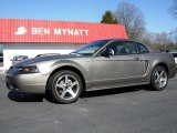 2001 Mineral Grey Metallic Ford Mustang Cobra Coupe #76072561