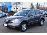 2010 Urban Titanium Metallic Honda CR-V EX-L AWD #76072507