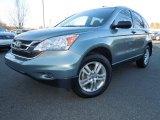 2010 Opal Sage Metallic Honda CR-V EX #76072352