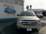 2013 Pale Adobe Metallic Ford F150 XLT SuperCrew #76157752
