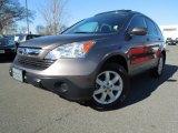 2009 Urban Titanium Metallic Honda CR-V EX-L #76127500