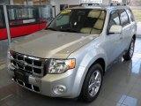 2009 Brilliant Silver Metallic Ford Escape Limited V6 4WD #76185752