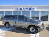 2010 Mineral Gray Metallic Dodge Ram 1500 ST Regular Cab #76185540