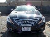 2013 Pacific Blue Pearl Hyundai Sonata SE #76223977