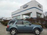 2010 Steel Blue Metallic Ford Escape XLT 4WD #76279039