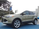 2013 Ginger Ale Metallic Ford Escape Titanium 2.0L EcoBoost #76279104