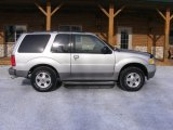 Silver Birch Metallic Ford Explorer in 2003