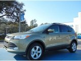2013 Ginger Ale Metallic Ford Escape SE 1.6L EcoBoost #76332584