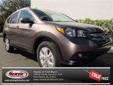 2013 Urban Titanium Metallic Honda CR-V EX-L #76332435