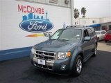 2010 Steel Blue Metallic Ford Escape Limited V6 #76389056