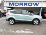 2013 Frosted Glass Metallic Ford Escape SE 1.6L EcoBoost 4WD #76456445